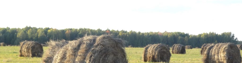 заготовка сена и сенажа