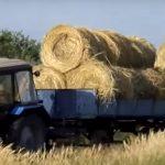Бизнес по заготовке сена и сенажа