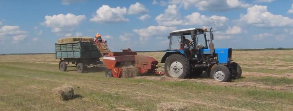 Заготовка сена из сеяных трав